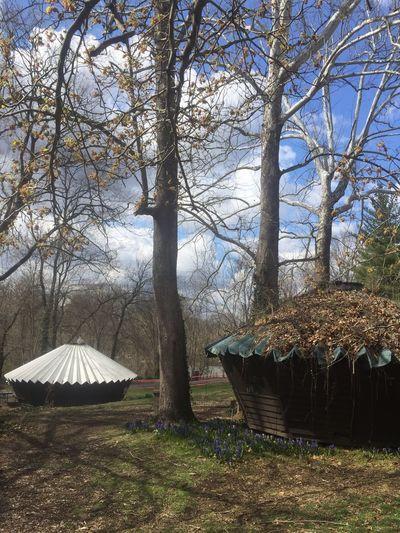Glen Echo Park Parks Amusementparks GlenEchoPark Maryland Architecture Art Artists EyeEmNewHere