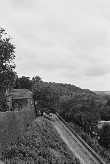 la citadelle de Namur Analogue Photography CitadelleNamur Namur Nature Noir Et Blanc Analog Argentique Black And White Blackandwhite