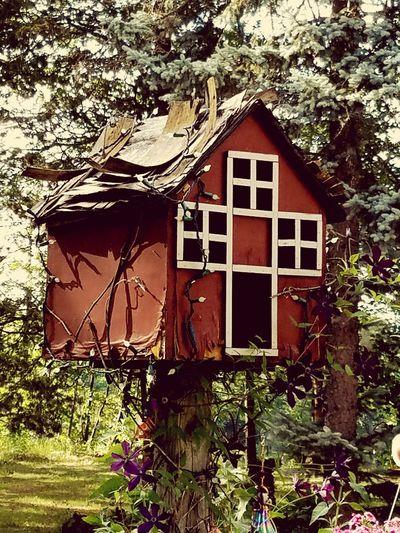 Outside, Garden, Birdhouse,