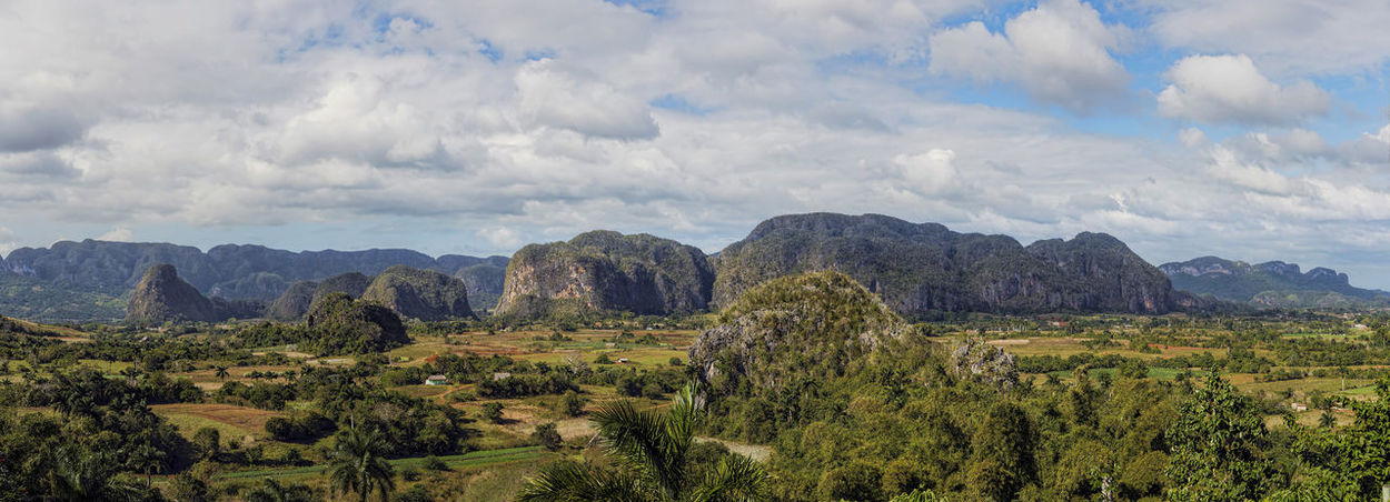 vinales valley in Cuba, which is known for the cultivation of tobacco, the famous Cuban cigars Cuba Viñales Valley, Cuba Beauty In Nature Day Growth Landscape Mountain Nature No People Outdoors Scenics Sky Tobacco Cultivation Tobacco Fields Tranquil Scene Tranquility Tree Viñales Valley The Great Outdoors - 2018 EyeEm Awards The Traveler - 2018 EyeEm Awards