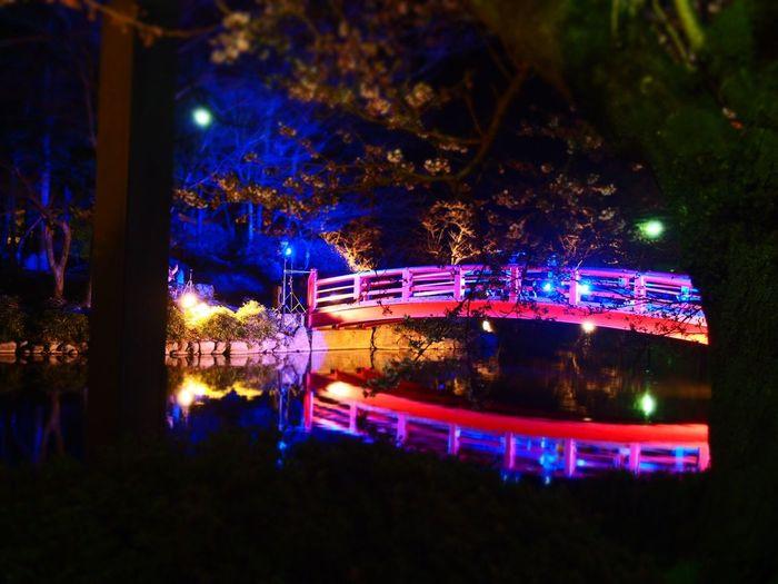 一週間が早いです😵💨 Water Reflections Night View Reflection EyeEm Gallery Light And Shadow Nagano, Japan Lake View 臥竜公園