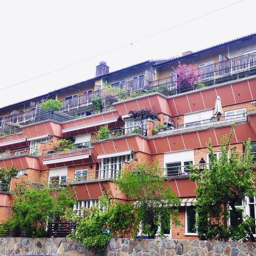 The Coolest Balconies In The City Building Buildings Trees Flowers Gröndal Stockholm Stockholm, Sweden
