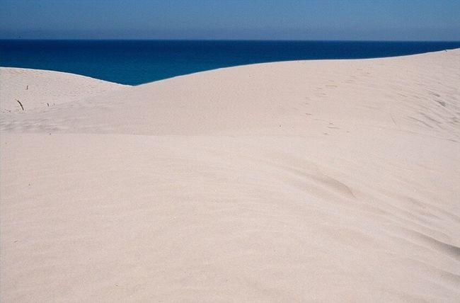 Sea Beauty In Nature Outdoors Landscape Sardegna Sardinia,italy Sardiniaexperience Beach Nature Italia Italy