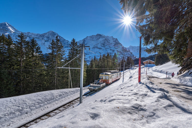 Train on railroad track against trees during winter