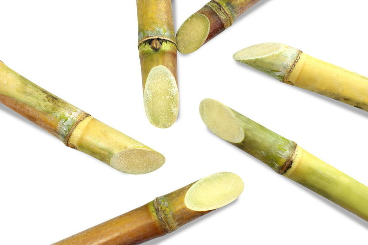 Sugarcane, Cane, Sugarcane piece fresh, sugar cane on white background, Sugarcane agriculture Sugarcane Cut Sugarcane Fresh Close-up Cut Out Group Group Of Objects Healthcare And Medicine High Angle View Indoors  Still Life Studio Shot Sugarcane Sugarcane Field Sugarcane Juice Sugarcane Plantation Sugarcane Seller Sugarcane Tree Sugarcanejuice White Background Yellow