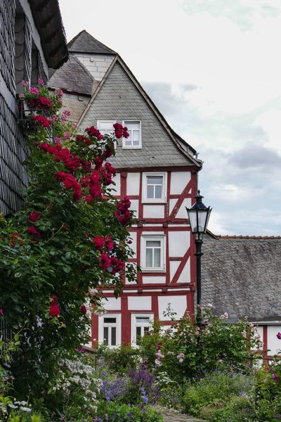 Fachwerkhäuser Marburg An Der Lahn Architecture Building Exterior Built Structure City Day Exterior House No People Outdoors Plant Residential  Residential Building Sky Tiled Roof  Tree Window