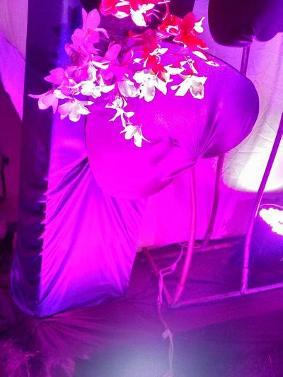 Violet By Motorola Decoration Marriage