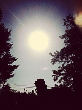 Sicily Raggi Di Sole Prendendo Il Sole
