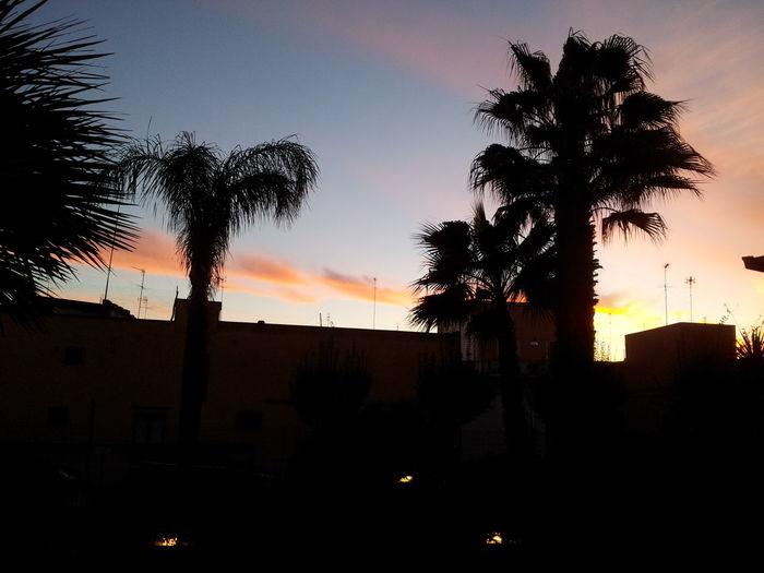 Sunrise Sun Beautiful Nature Siluet Sky