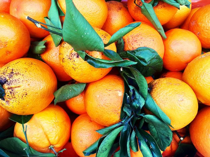 Mallorca oranges Mallorca Spanish SPAIN Healthy Eating Food Food And Drink Fruit Wellbeing Freshness Citrus Fruit Orange Color Orange Orange - Fruit Full Frame Large Group Of Objects Backgrounds Plant Part No People High Angle View Close-up