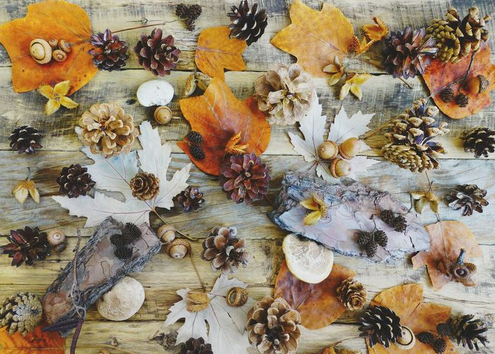 High angle view of autumn leaves on table