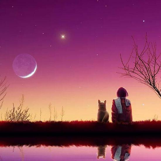 Algún día alguien entrará en tú vida, y te hará entender porque otros no se quedaron~♥ Accionpoetica Nochedetras Love KAWAII tierni picoftheday youknow enladeprecsm enbuscadelafelicidad :)