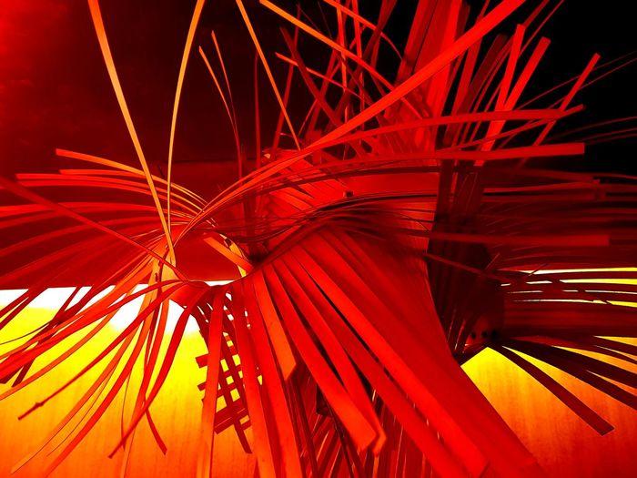 Illuminated Red Abstract Close-up