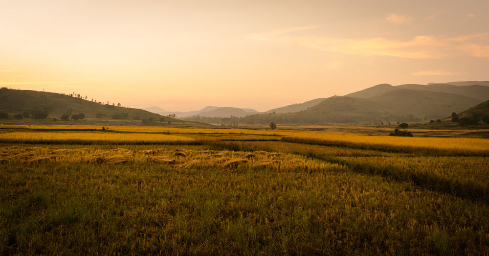 Sunset captured With Nikon D3300 #hills #holiday #happylife #adventure #mountains #mountainclimbing #zest Sky Landscape Environment Beauty In Nature Scenics - Nature Mountain Tranquil Scene Tranquility Land Sunset Mountain Range Nature Field Grass Non-urban Scene No People Rural Scene Plant Cloud - Sky Idyllic Outdoors