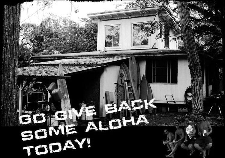 Go give back some aloha today!! Photogenic  Hawaiian Aloha Surf First Eyeem Photo