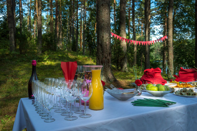 Place setting on table in forest
