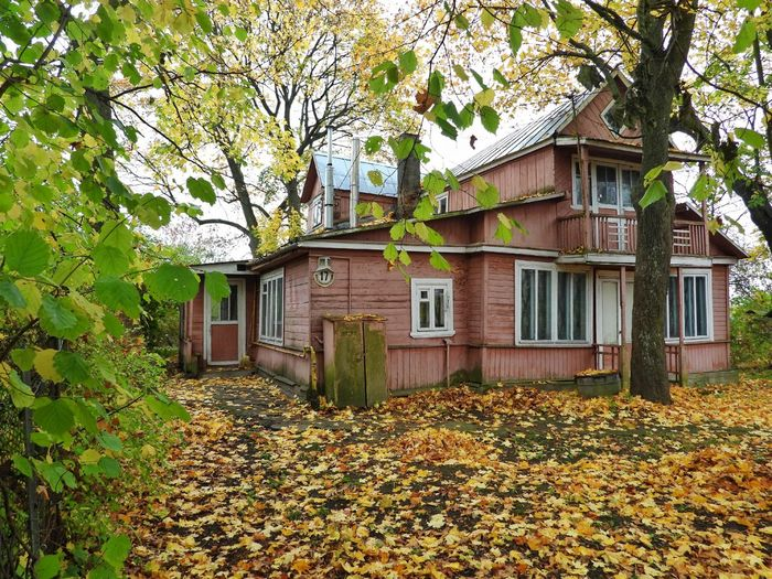 House amidst trees and plants during autumn