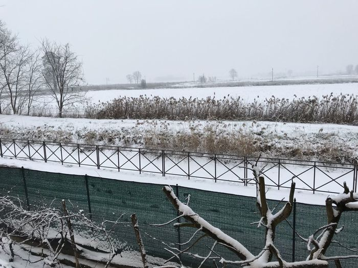 Naviglio di Bereguardo No Filter Countryside Naviglio  Bereguardo Pavia Lombardia Italy Cold Temperature Snow Winter Plant Tree Nature Sky Day Fence Tranquility Frozen Water Barrier Boundary Beauty In Nature White Color Tranquil Scene Outdoors Snowing