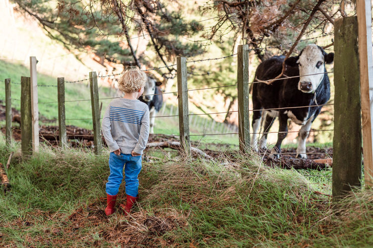 Boy standing in a field