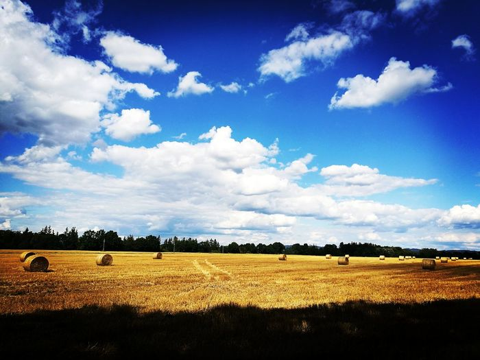Field Nature Bale Of Straw HuaweiP9 Wonderful Place Wonderful View Nice Day Pole Slama Priroda Colourful Summer Views Summer Beautiful Nature
