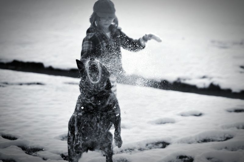 Snow Playing In