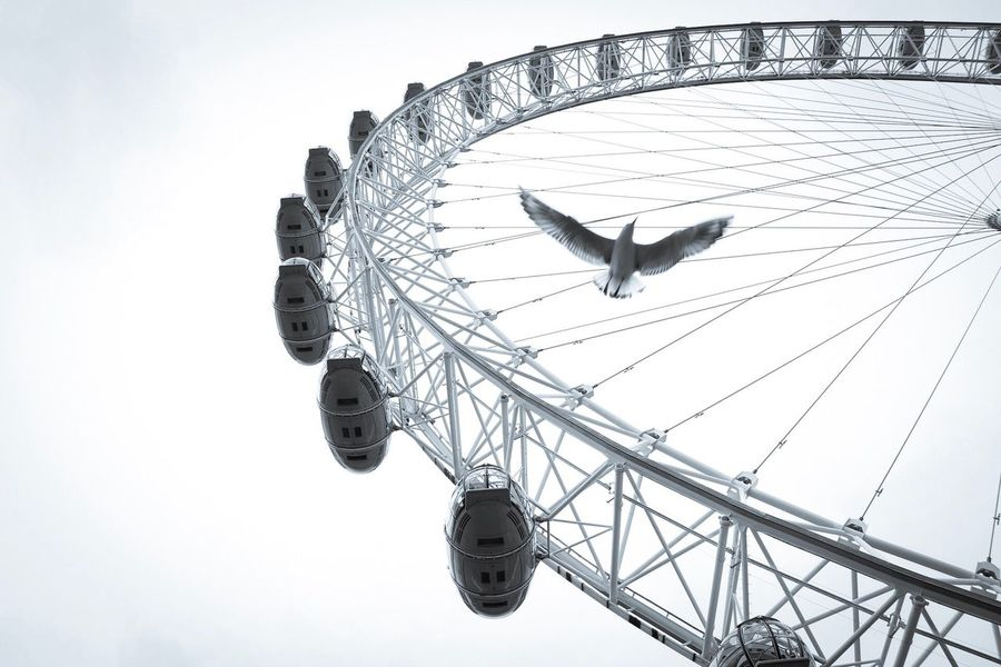 Amusement Park Ferris Wheel Sky Arts Culture And Entertainment Low Angle View Leisure Activity Amusement Park Ride Clear Sky Outdoors No People Day Big Wheel Nature London Eye Everyday Lives Built Structure Places Of Interest Tourist Attraction  London Outdoor Photography Tourism Travel Destinations City Contrast Silhouette