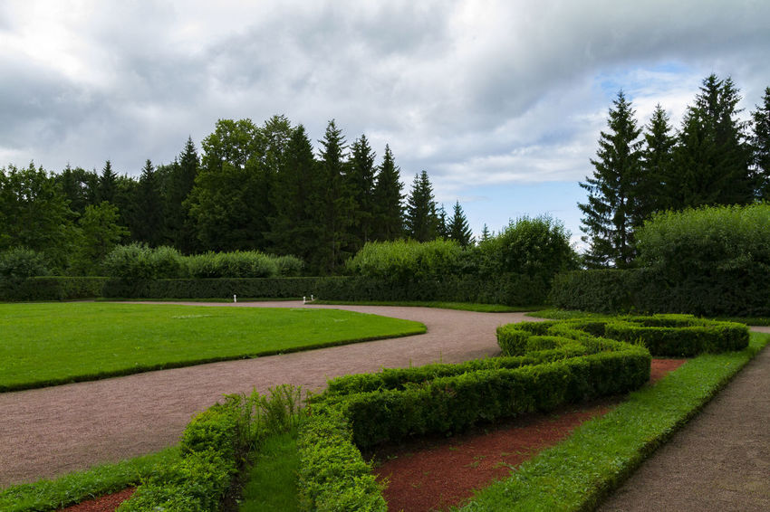 A garden from the Peterhof Palace / Saint Petersburg Peterhof Plant Russia Saint Petersburg Sankt-Petersburg Beauty In Nature Cloud - Sky Day Footpath Garden Grass Green Color Growth Landscape Nature No People Outdoors Peterhof Palace Petersburg Plant Scenics Sky Tranquil Scene Tranquility Tree