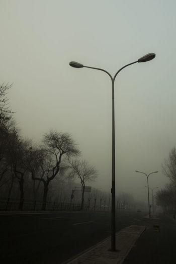 前后不见行人,左右没亮街灯,要非太平时节,倒怕来人剪径。 street light Street Street Light Tree Fog Road City The Way Forward Dusk