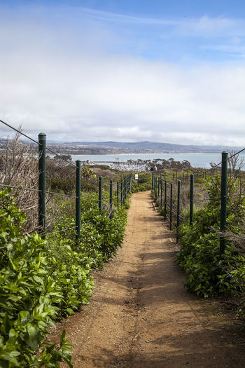 Hiking trail above Dana Point Harbor in Southern California, USA on a sunny day Dana Point, Ca Day Hiking Hiking Trail Journey Landscape Landscape_photography Nature Nature No People Ocean Outdoors Path Sky Trail Travel View Wilderness