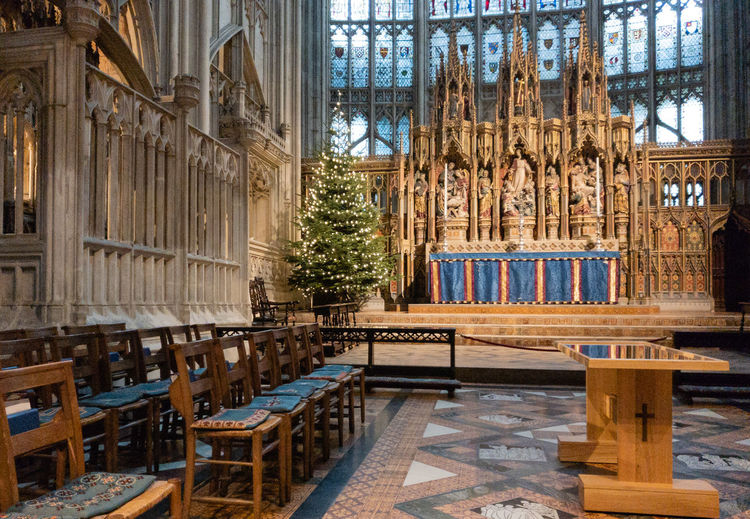 Architecture Place Of Worship Religion No People Gothic Style Stained Glass Window Chapel christmas tree Gloucester Cathedral