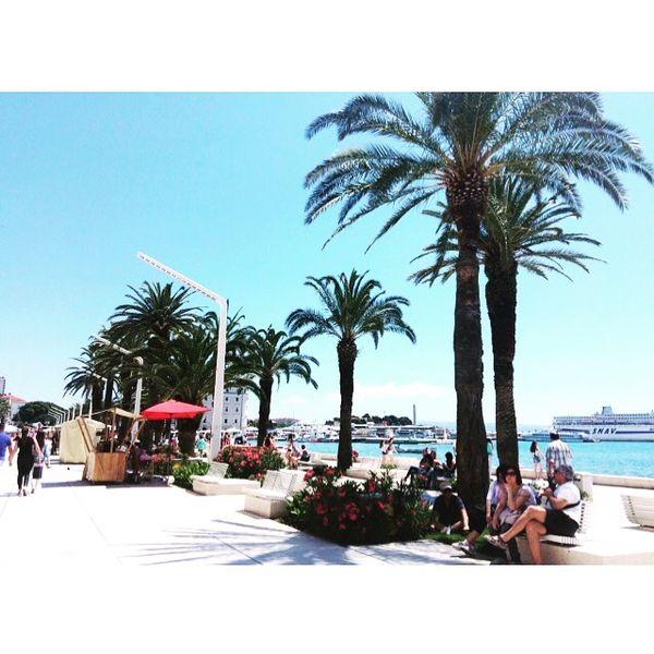 😚 Palms Summer Beach