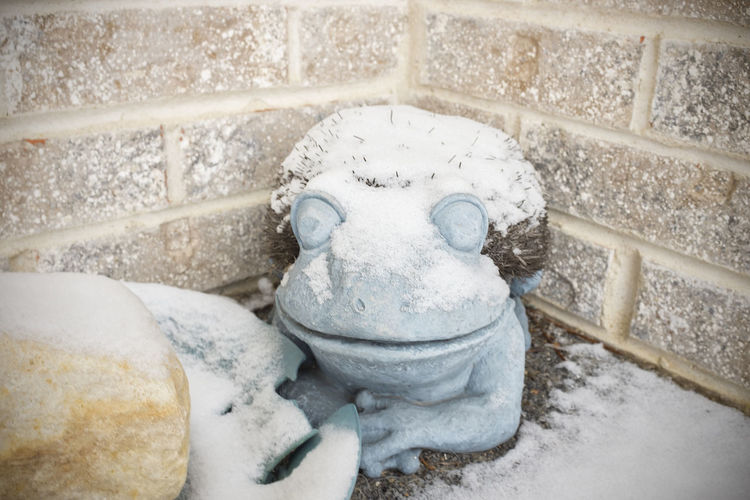 Snow On The Frog Snow Winter Representation No People Cold Temperature Day Sculpture Creativity Close-up Nature White Color Old Statue Outdoors Snowing Autumn Boot Brush