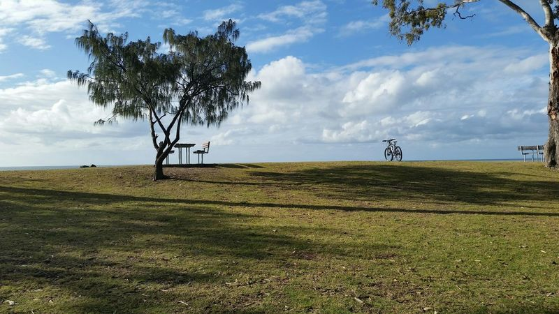 Sprinkles Donuts Save The World Being Homer Simpson Donut Holes Taking Photos Hello World Cheese! Chocolate Covered Finding A Parking Spot Enjoying Life