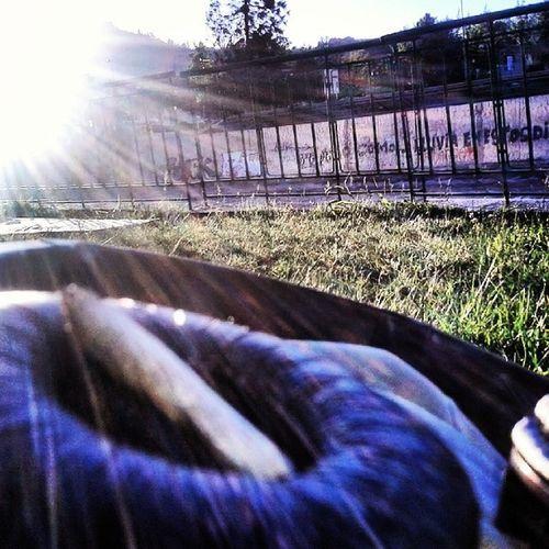 Instachile Riomapocho :3 Costanera  Weed