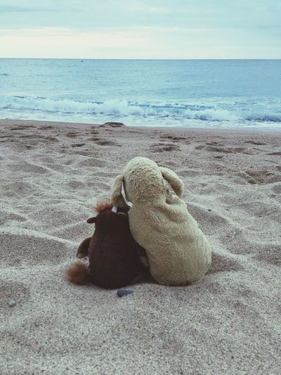 Stuffed Animal Friend Stuffed Animal Photo Shoot No People Water Horizon Over Water Beach Sea Sand Outdoors Nature EyeEm Best Shots EyeEmbestshots Eyeemphotography Spain♥ Spain ✈️🇪🇸 Stuffed Toys Stuffedanimal