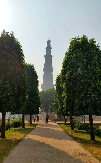 Showcase: February Mandir Newdelhi India Trees Footpath Perspective Walkingman Dry