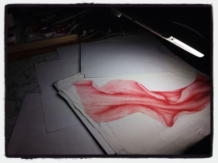 Abstract Drawing of a spider lily petal. making a dye sample for up coming series of dresses and such. Art Flower