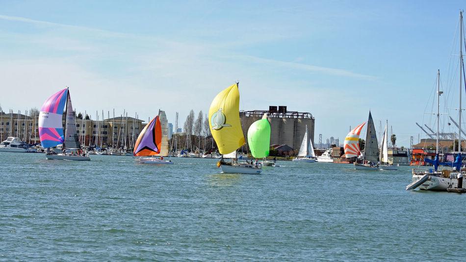 Sailboats Racing @ Embarcadero Cove 4 Action Sports Pastel Power Sailboats Tacking Colorful Sails