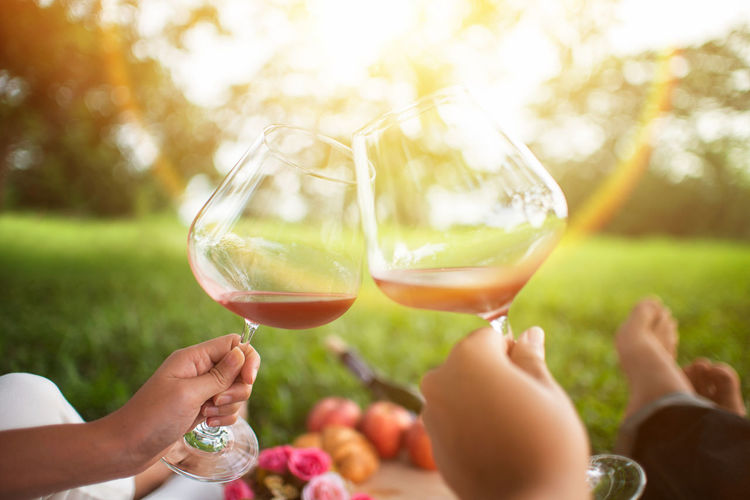 Adult Alcohol Body Part Bonding Celebration Celebratory Toast Drink Finger Food And Drink Glass Hand Holding Human Body Part Human Hand Lifestyles Outdoors People Refreshment Togetherness Two People Wine Wineglass Women