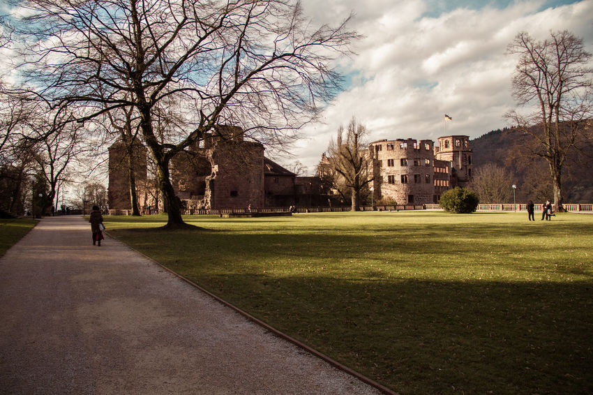 Love Renaissance Architecture Bare Tree Beauty In Nature Branch Building Exterior Built Structure City Day Grass Heidelberger Schloss Nature No People Outdoors Sky Tree