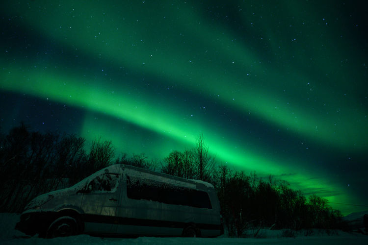 Aurora Borealis Northern Lights Norway Travel Photography Tromsø Winter Astronomy Aurora Polaris Beauty In Nature Cold Temperature Green Color Illuminated Nature Night No People Outdoors Polar Night Scenics Sky Snow Star - Space Svalbard  Tranquility Travel Destinations Tree Winter