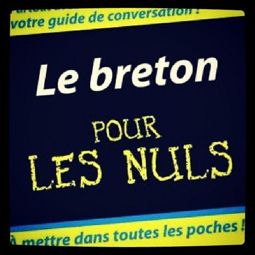 Lebreton Pourlesnuls