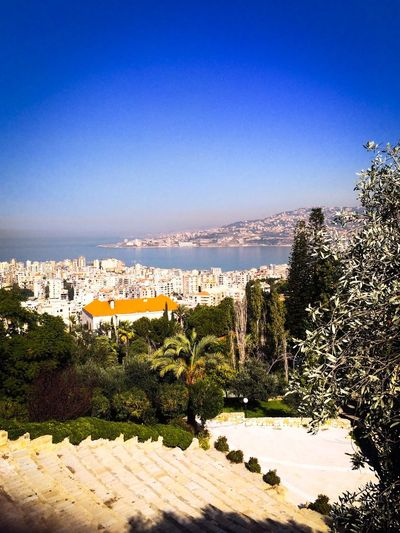 Skyline View Sea Architecture Roman Amphitheater Landscape Lebanon Green Trees