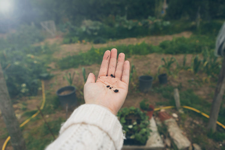 Cropped hand of woman holding soil at backyard