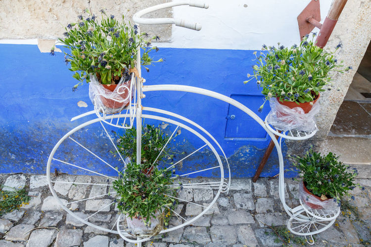 Bicycle Blue Bouquet Day Flower Freshness Growth Healthy Eating High Angle View Human Hand Leaf One Person Outdoors People Plant Potted Plant The Architect - 2017 EyeEm Awards Window Box Óbidos