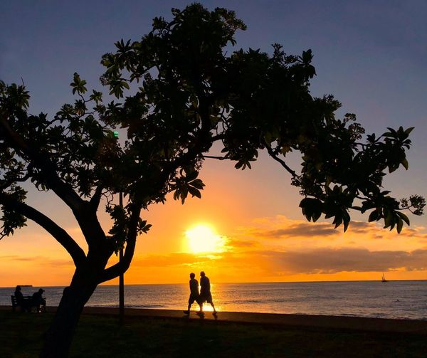 Hawaii Oahu Magic Island Sea Sailboat Yellow Sky Sunset Sunbeam Sun Reflection Silhouettes Walking By The Beach Tree Sunset Silhouette Beauty In Nature Beach Scenics Nature Sky Horizon Over Water Water Tranquil Scene Togetherness Tranquility Men Women Outdoors Growth Real People People