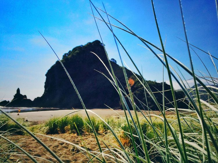 Lion rock. IPhoneography Iphoneonly Landscape Landscape_Collection Lion Rock Rock Landmark Landscape_photography Beach Beachphotography Life Is A Beach Sand Grass Sky Clouds Summer Holiday Traveling Tourist Destination Ladyphotographerofthemonth Snapseed The KIOMI Collection The Great Outdoors - 2016 EyeEm Awards