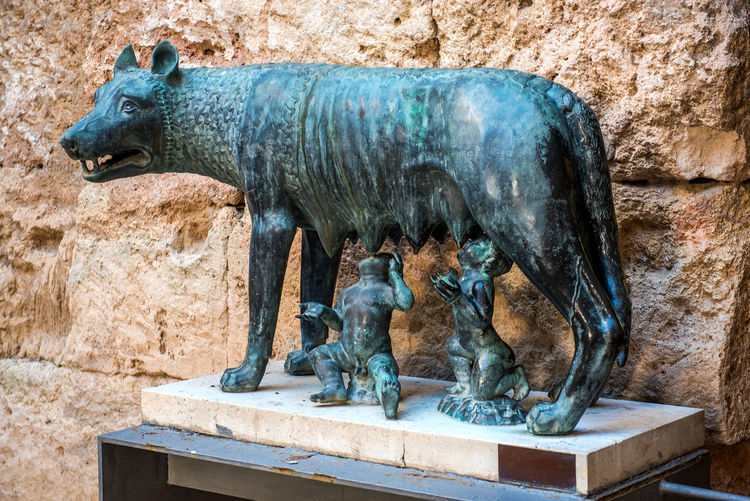 The Capitoline Wolf. Bronze sculpture of a she-wolf suckling twin human infants, inspired by the legend of the founding of Rome. National Archaeological Museum of Tarragona. Spain Ancient Animal Animal Themes Archaeological Bronze Sculpture Bronze Statue Capitoline Wolf Catalonia Europe Fed History Infants Legend Mammal Museum Myth Mythology No People Object Old Sculpture SPAIN Statue Symbol Tarragona