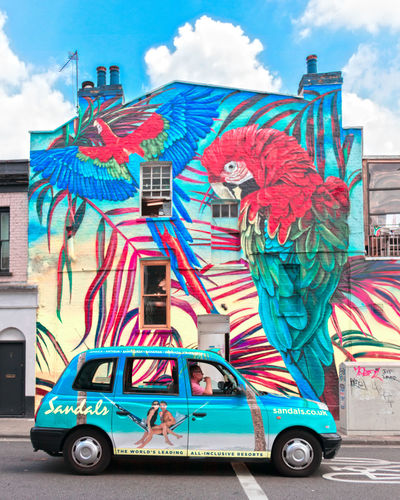 Tropical vibes in London Camden Town Camdenmarket Camden Life London Tropical Parrots Summer Summer Vibes Good Timing For Good Picture City Multi Colored Car City Street Sky Building Exterior Cloud - Sky Architecture Taxi Street Art Mural Spray Paint Graffiti
