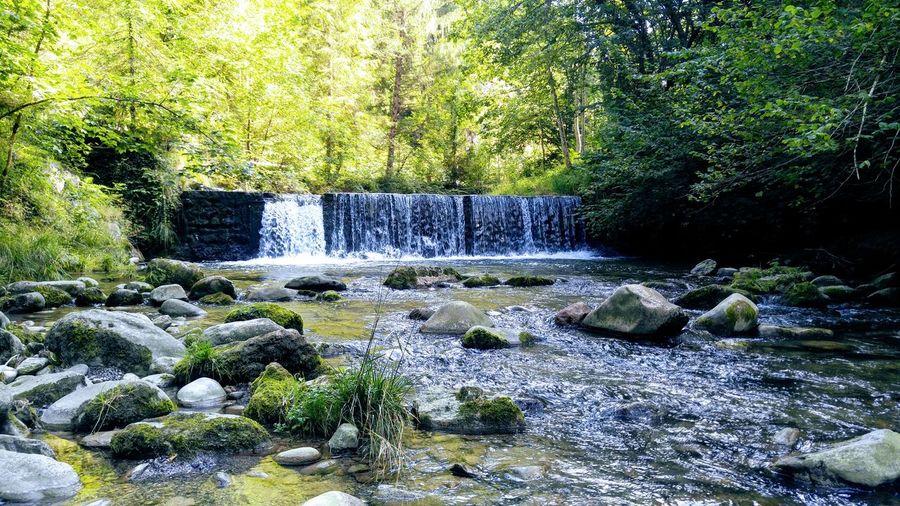 Waterfall near